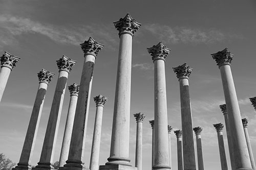 Capitol Columns at the U.S. National Arboretum