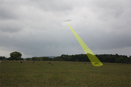 UFO with tractor beam on a cow