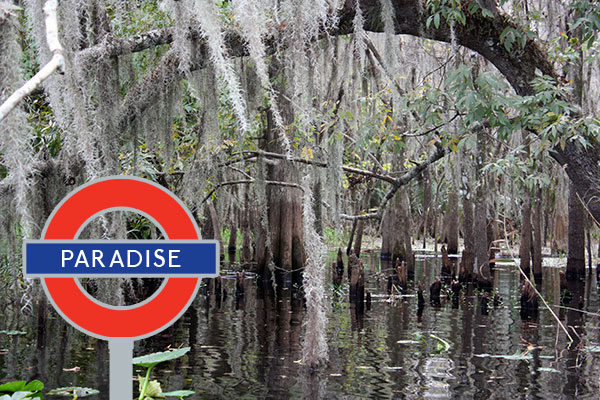 Paradise Tube Sign in Florida Swamp