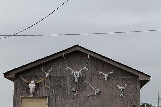 House of skulls