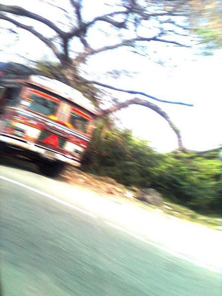 Fleeting by Indira Mukherjee
