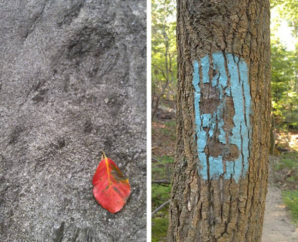 Red leaf and trail marker that looks like a face