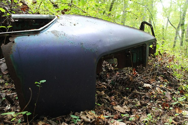 Trash -- part of car -- in the woods